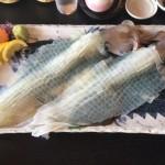 呼子のイカでおすすめの店と河太郎で食べるコツ!マリンパルも