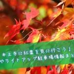 本土寺に紅葉を見に行こう!見頃やライトアップ駐車場情報まとめ!