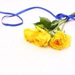 父の日に贈る花って何?色は?人気があるものはコレ!