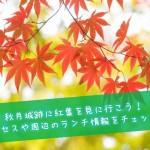 秋月城跡に紅葉を見に行こう!アクセスや周辺のランチ情報をチェック!