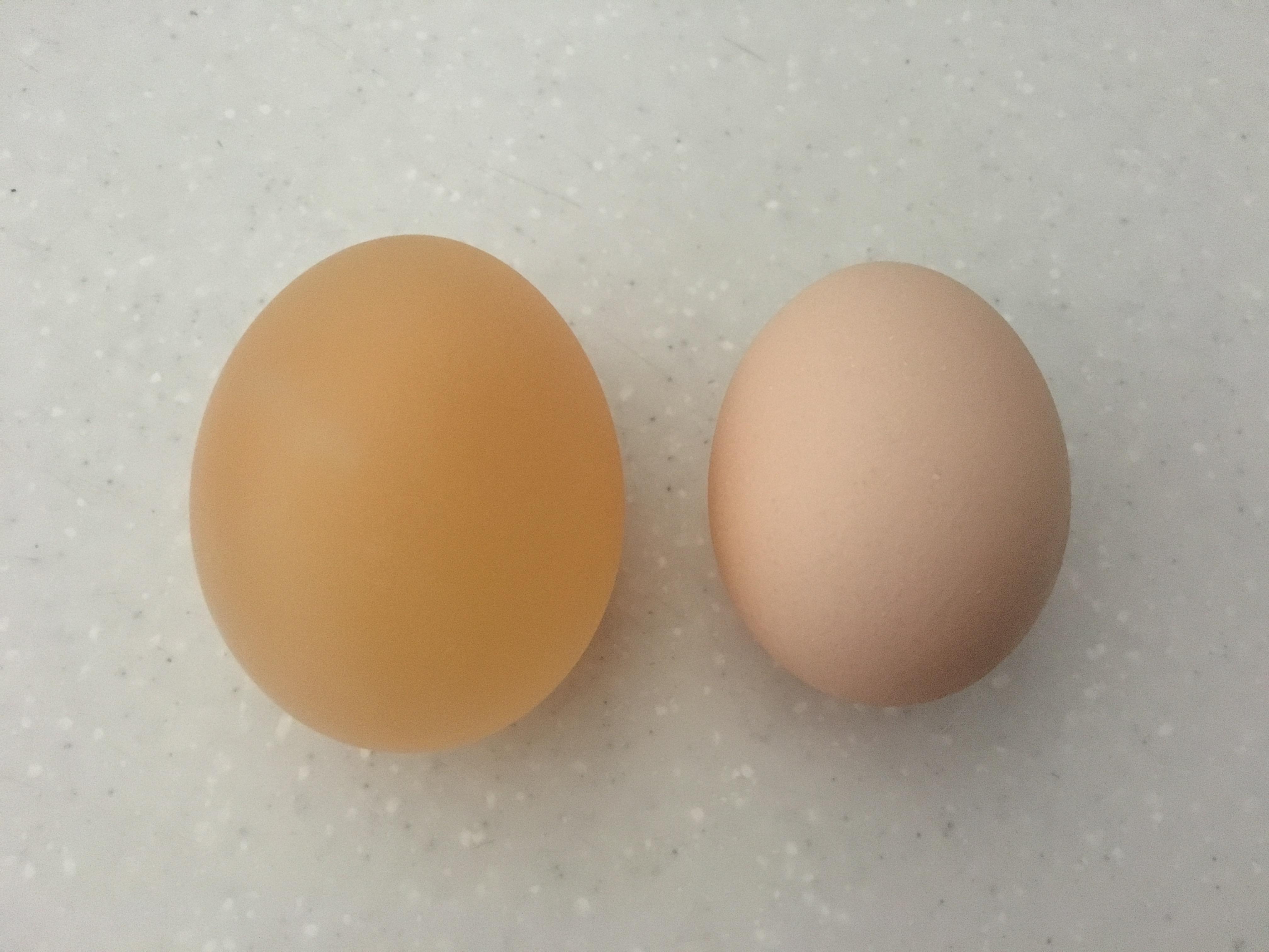 卵 つける に 生 酢